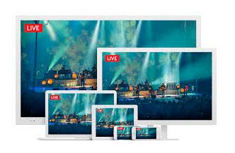 Livestream Platform Annual Subscriptions